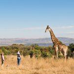 Fugitives Drift Nature Reserve